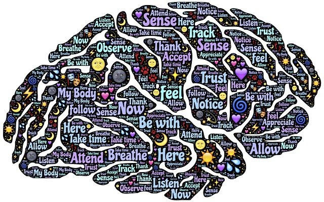 Nootropics and how it affects the brain